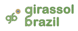 _GirassolBrasil_02